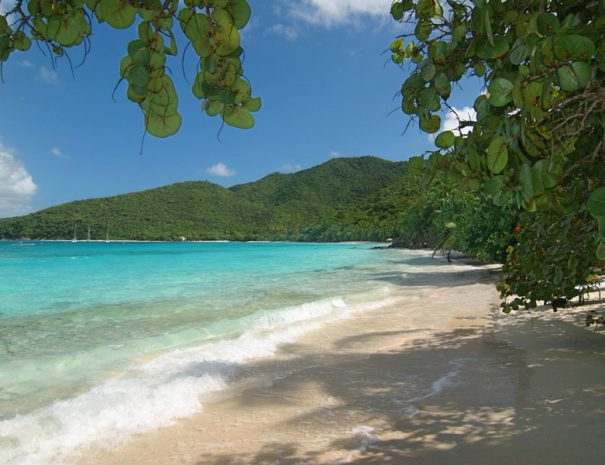 Located Between Trunk Bay and Cinnamon Bay